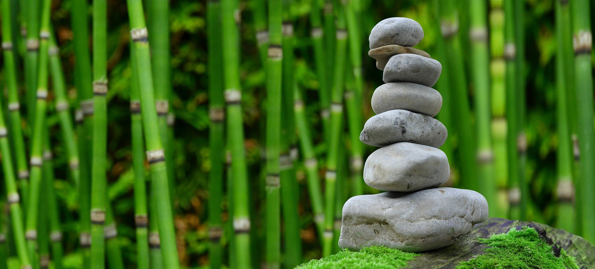 small rocks stacked on top of each other with bamboo in the background.